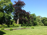 Shapwick House Grounds